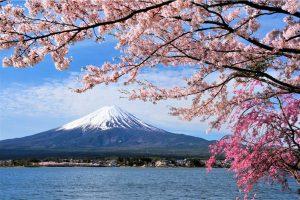Hồ sơ cần thiết khi xin visa Nhật Bản