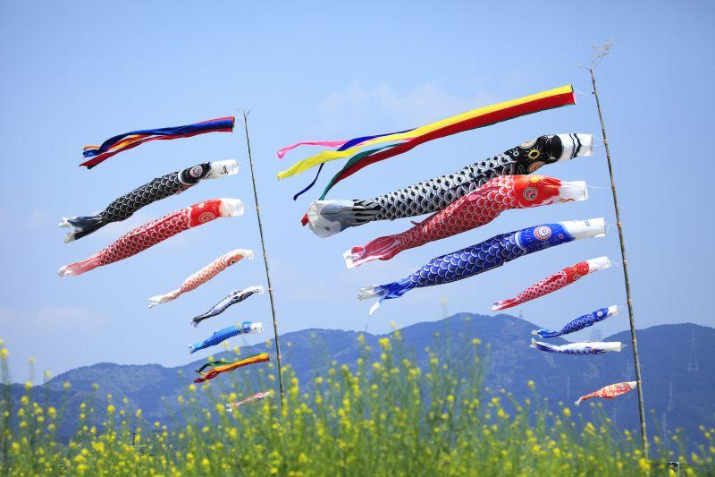 5 lễ hội truyền thống lớn ở Nhật Bản nhất định bạn phải tham gia khi du học nước này