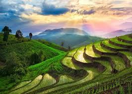 Danh sách các địa điểm nên đi ở Bali